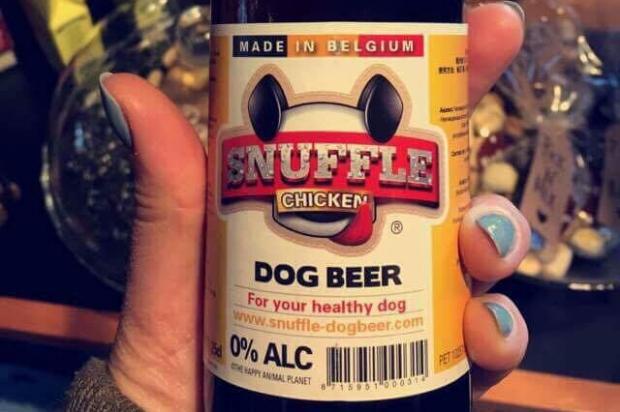 Piwo dla psow